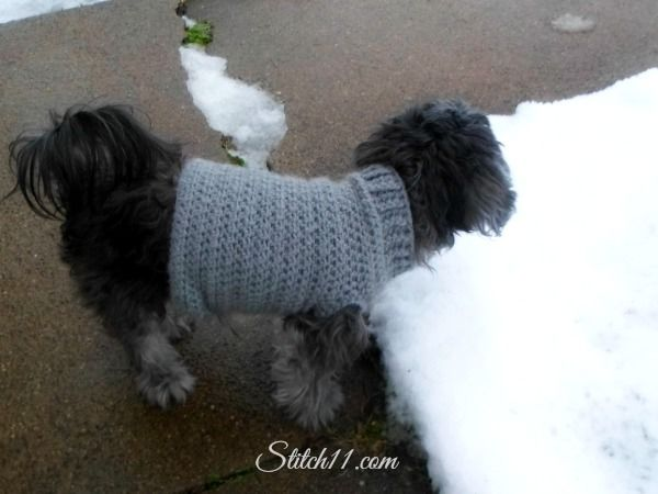 Knitting Patterns For Extra Small Dogs : Free Crochet Dog Sweater Pattern CROCHET FOR PETS Pinterest