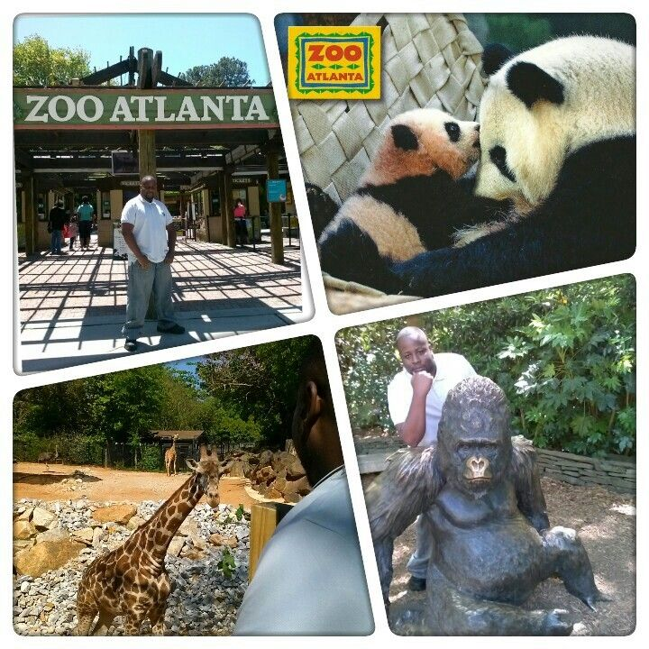 Zoo atlanta coupon code