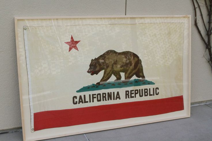 framed california flag