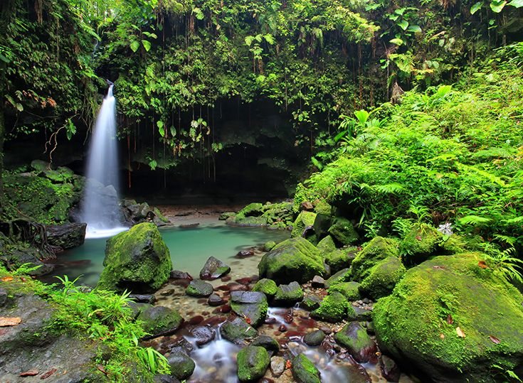 Soak in the greens and blues at Emerald Pool in Dominica.