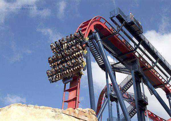 Sheikra busch gardens tampa crazy roller coasters - Busch gardens tampa roller coasters ...