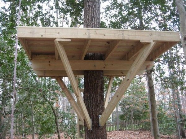 treeless tree house plans outdoor ideas pinterest