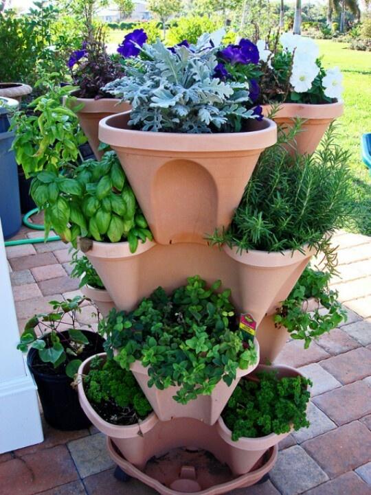 Small Herb Garden Attrium D Pinterest
