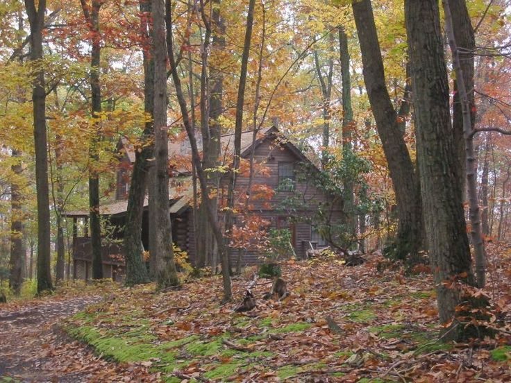 Log Cabin In The Woods Escape From It All Pinterest