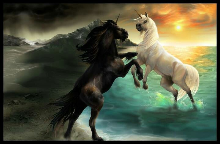 the mythology behind the unicorn Learn about the celtic unicorn - its role in celtic astrology, the meaning of the celtic unicorn, myths, tattoos, and more.