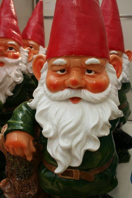 garden gnomes   ELF ON A SHELF   Pinterest