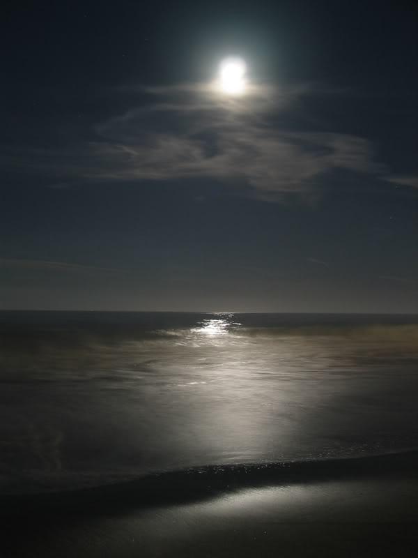 Moonlight Sonata | Moonlight Sonata | Pinterest