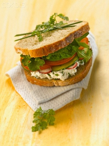 Goat Cheese And Vegetable Sandwich Recipes — Dishmaps