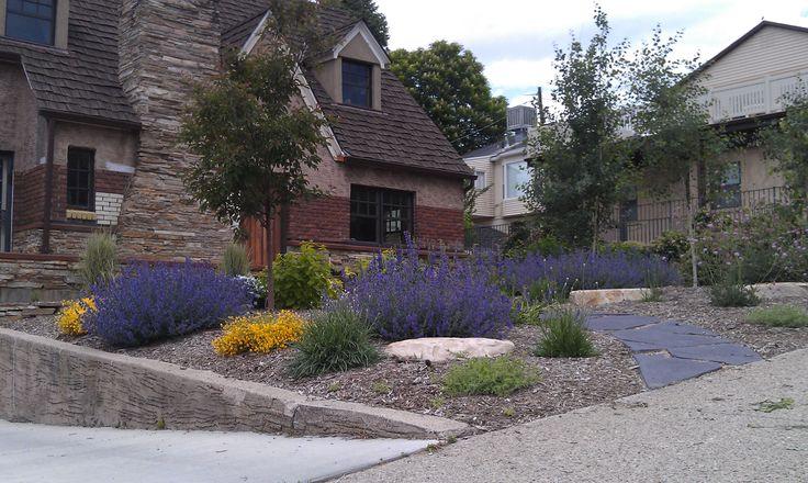 Landscape Design Drought Tolerant Plants Xeroscape Pinterest