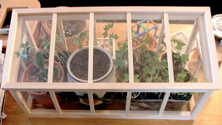Mini indoor greenhouse shower gifts pinterest for How to make a small indoor greenhouse