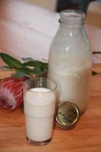 Home Made Oat Milk | Delish | Pinterest