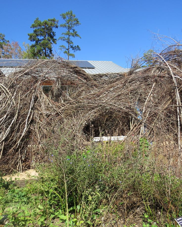 Pin By Helen Yoest Gardening With Confidence On Patrick Dougherty
