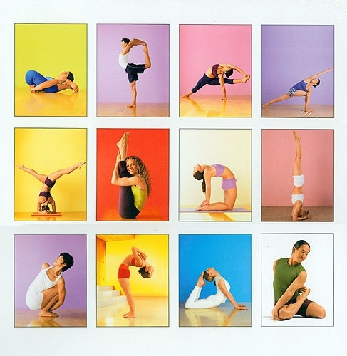 Different Types Of Yoga Photos