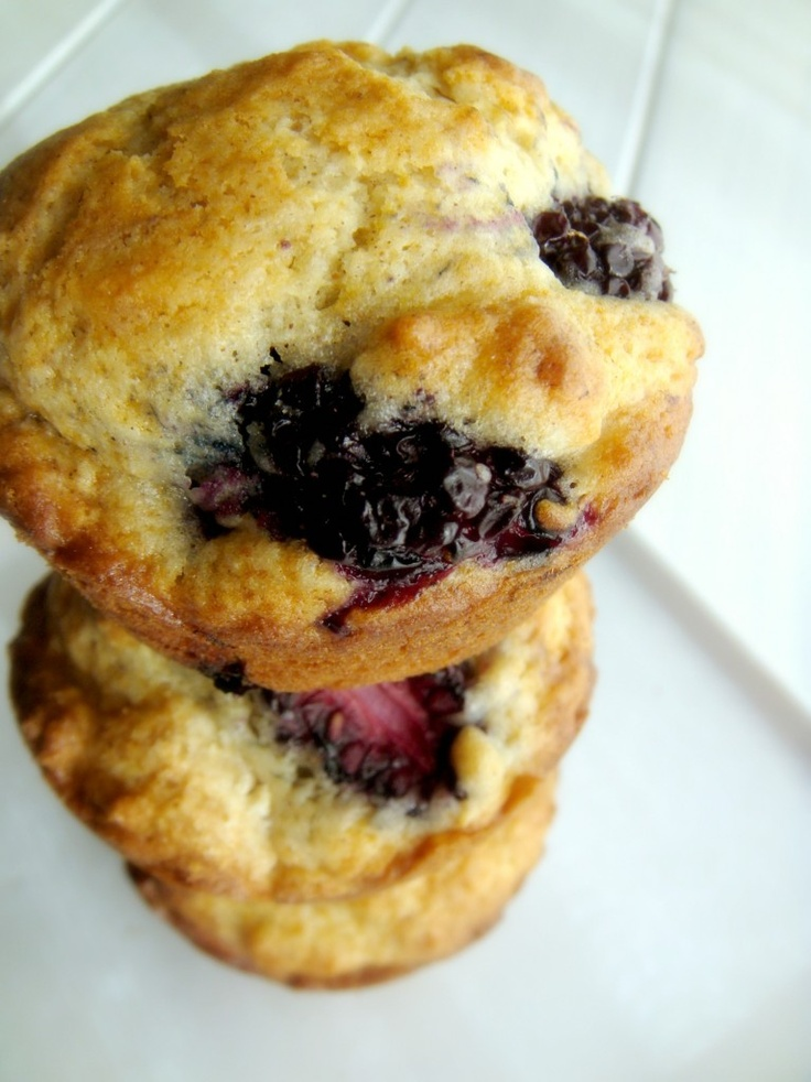 Blackberry Muffins, gosh these look so good!!!