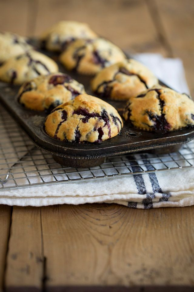 Blueberry Cornmeal Muffins | Hum.....Quelques douceurs pour mon q ...
