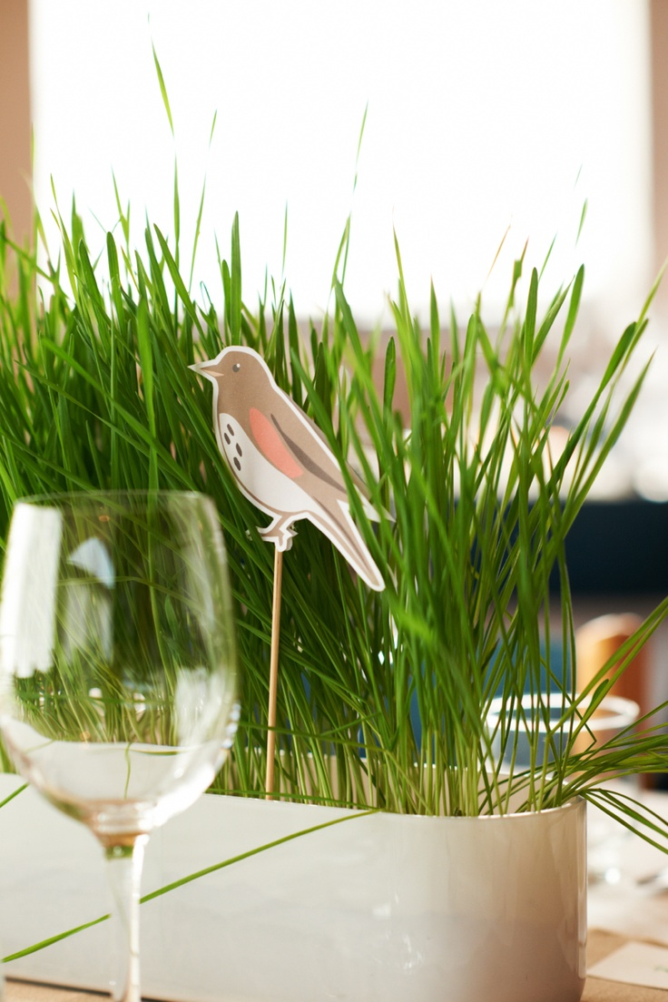 Wheatgrass decorations in a spring wedding