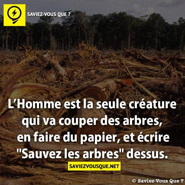 L homme est la seule cr ature qui va couper des arbres en - Jeux de tronconneuse qui coupe les arbres ...