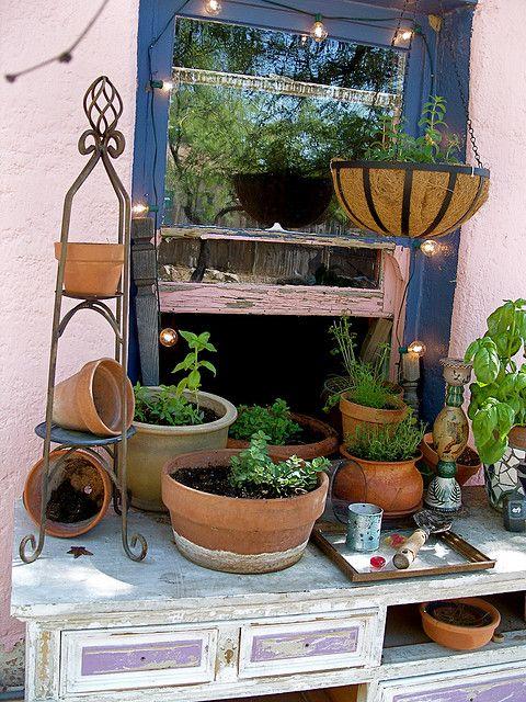 Diy Herb Garden Planting Ideas Pinterest