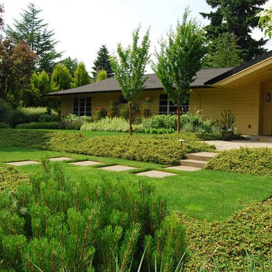 Guide Landscaping Ideas Ground Cover Yard Garden