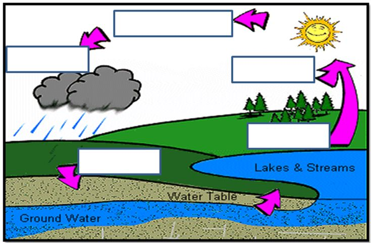 Water Cycle unlabeled   Water cycle   Pinterest