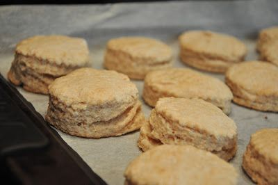 fluffy whole wheat biscuits! at Sophia's Sweets