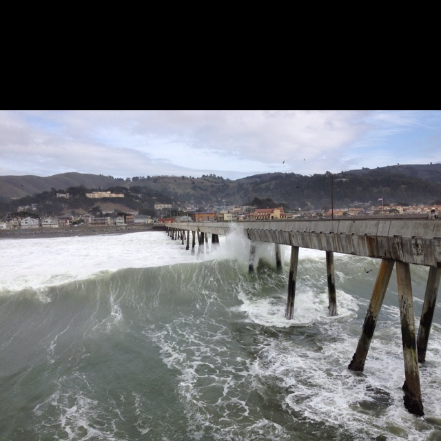 Pacificapier for Pacifica pier fishing report