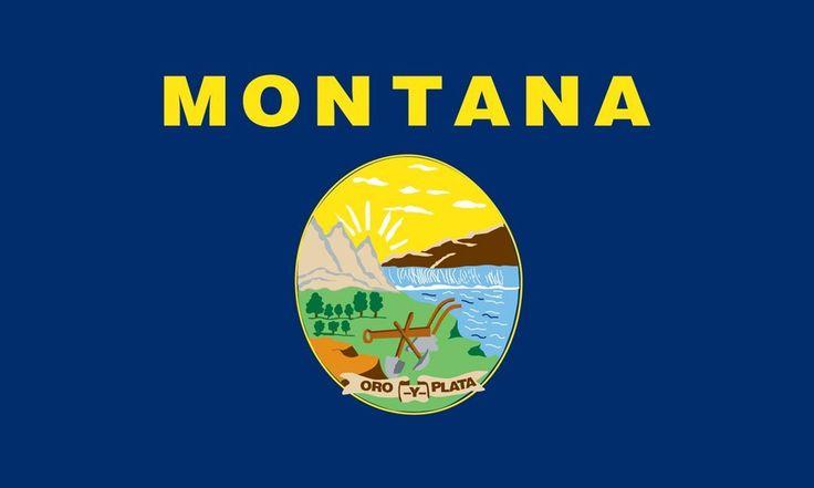 state flag montana