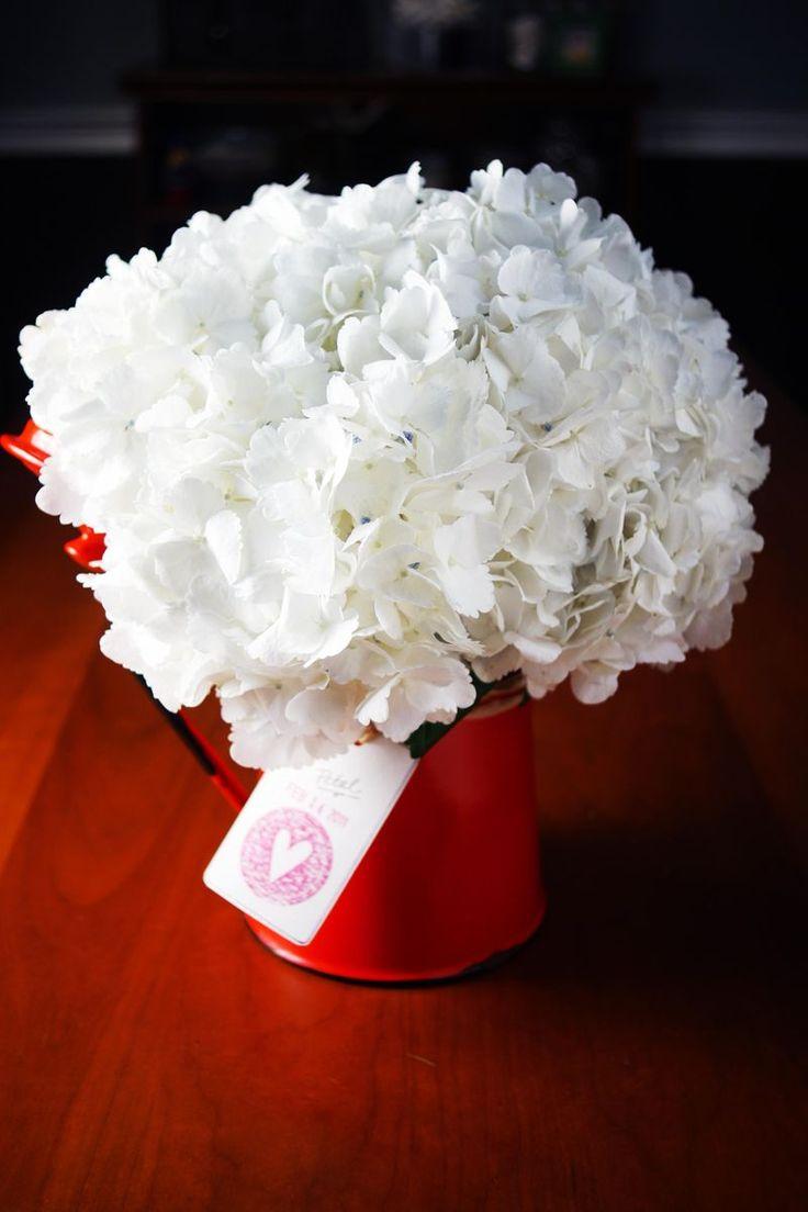 valentine flowers leigh