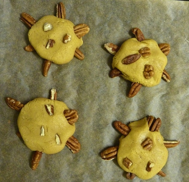 Snappy Turtle Cookies, teacher | Day 16 | Pinterest