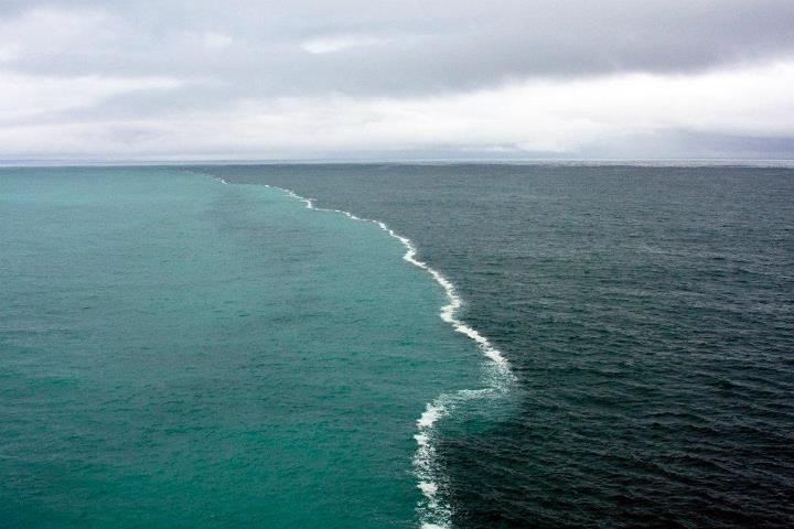 """In this picture taken by a photographer Kent Smith, fresh water from melting glaciers is meeting with the ocean. Ocean water has a higher percentage of salt and therefore has a different density making it difficult for the two bodies of water to mix.   I thought this was the most unusual thing I saw on the Alaskan cruise in the water. These two bodies of water were merging in the middle of the Alaskan gulf and there was a foam developing only at their junction.""""Kent smith"""""""
