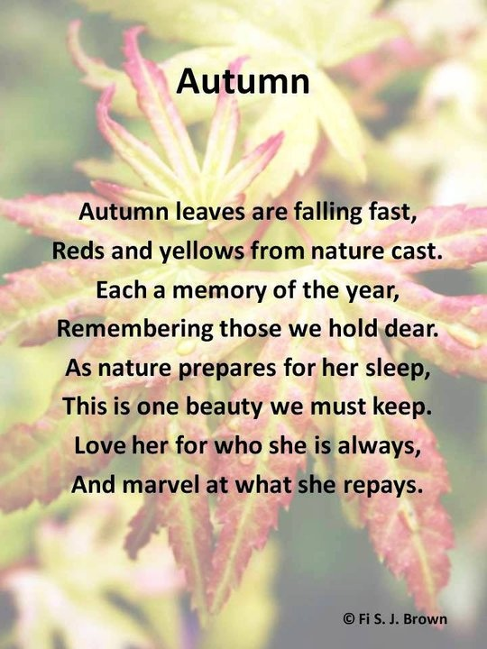 A Poem At The Joy And Marvel Of Autumn. Fall Into Autumn Pinterest
