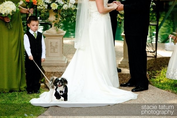 The flower girl was a dog too.  I love how the little boy is holding their leashes during the ceremony.   Wedding at Wildwood Inn   www.Denton-WildwoodInn.com