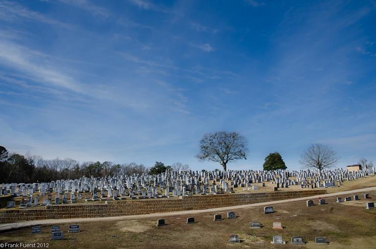 greenwood cemetery memorial day concert 2014