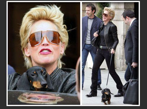 H Sharon με το σκύλο της...
