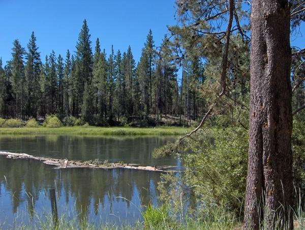 Big lake big lake oregon for Lost lake oregon fishing