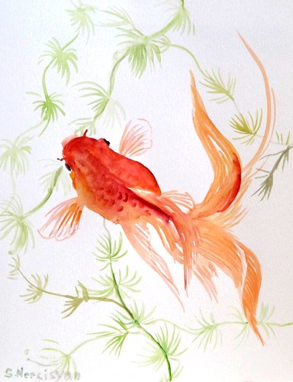 Goldfish original watercolor painting 8 x 10 for Fish out of water watercolor