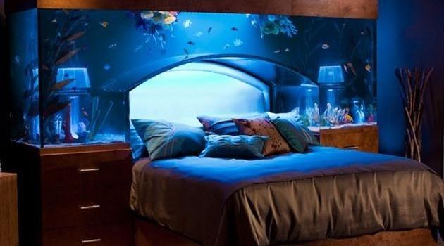 fish tank bed cool bedroom ideas pinterest
