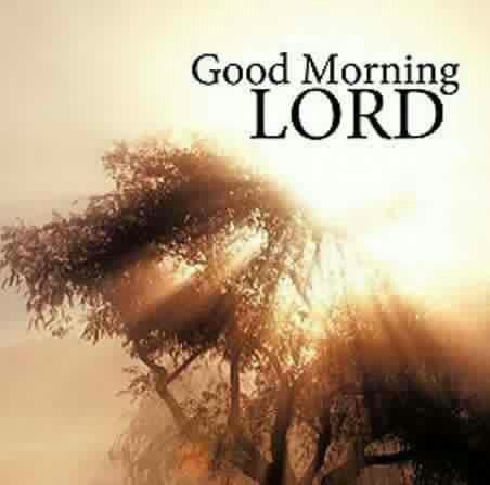 Good morning Lord