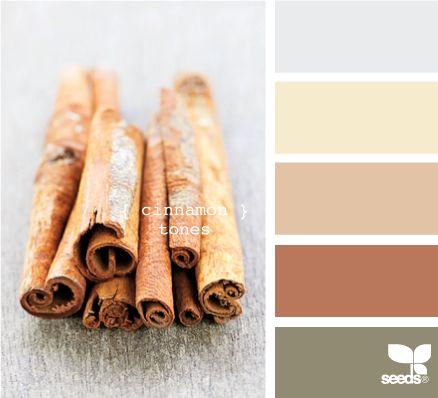 Kitchen: Cinnamon Tones