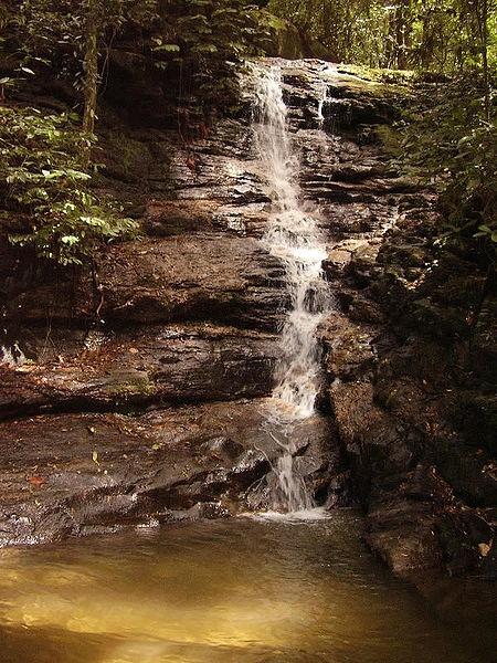 Cachoeira da Floresta da Tijuca
