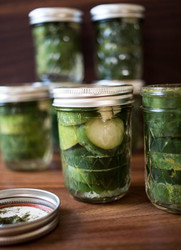 Homemade refrigerator pickles | Recipes to Try | Pinterest