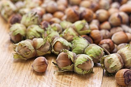 What is it? Wednesday: Hazelnut Meal | Bob's Red Mill