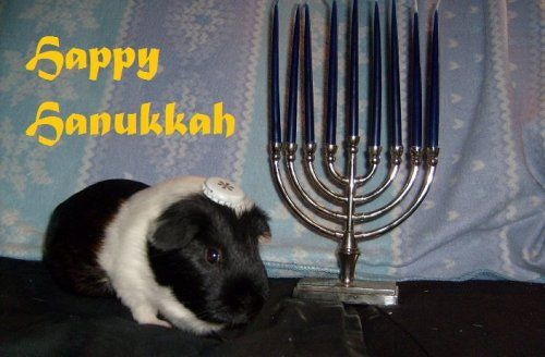 jewish new year email cards