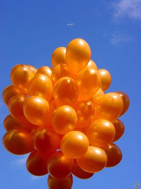 volim narančasto - Page 6 8c8f42865cedb8b72e8fd58e910d081e