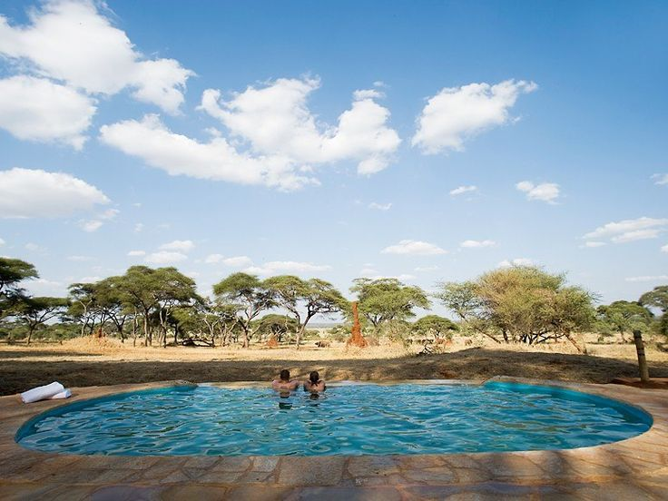 THE INFINITY POOL AT SANCTUARY SWALA, Tanzania, Africa  What You'll See: Located in the Tarangire National Park, this infinity pool sits directly in front of a watering hole where lions, leopards, and resident elephants frequent for refreshments among the baobab trees.