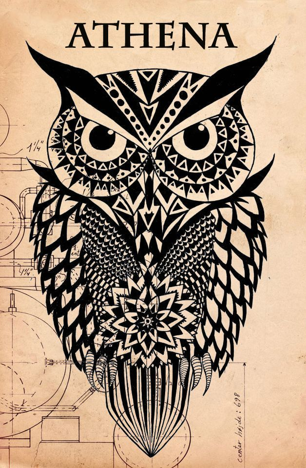 the gallery for gt athenas owl symbol drawing