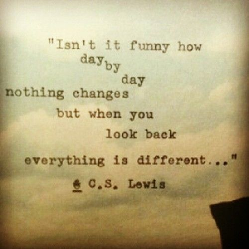 c s lewis : Isn't it funny how day by day nothing changes but when you look back, everything is different...