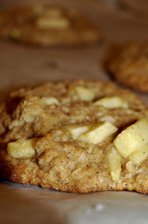 Apple Cinnamon Oatmeal Cookies Recipe — Dishmaps