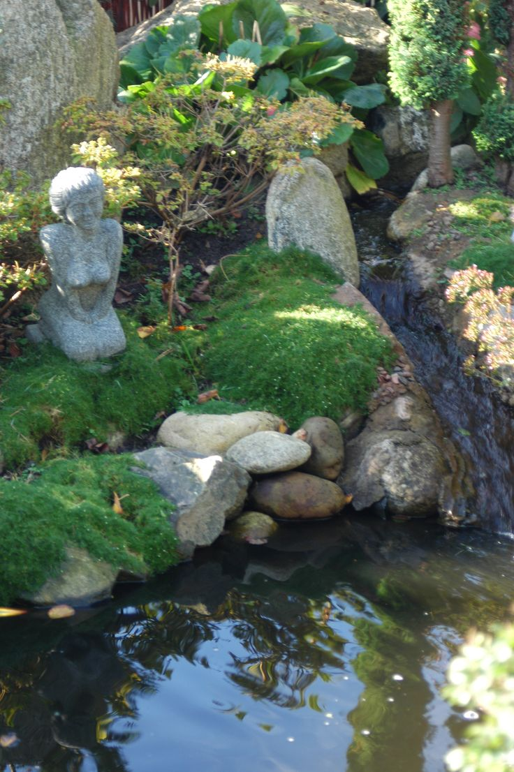 Backyard Ponds And Streams : Garden pond and stream  Dreaming of Water in the Garden  Pinterest