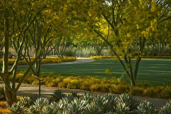 Image result for Sunnylands Gardens
